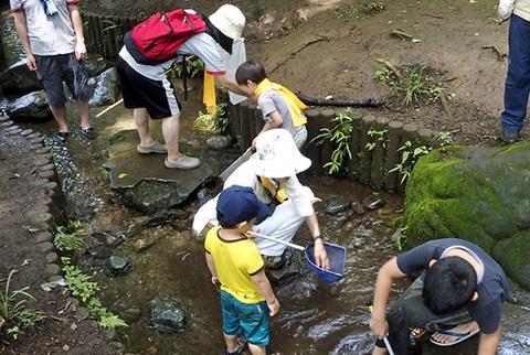 わき水の流れ10102.jpg