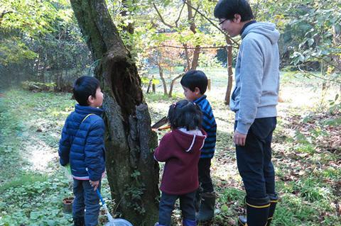 木の窪み見てる0001cs.jpg
