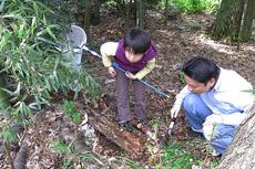 朽木を掘る0012cs.jpg