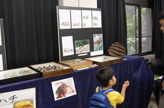2010農工大学祭・昆虫研究会.jpg