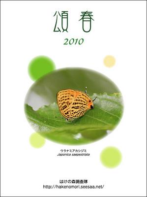 2010blog.jpg