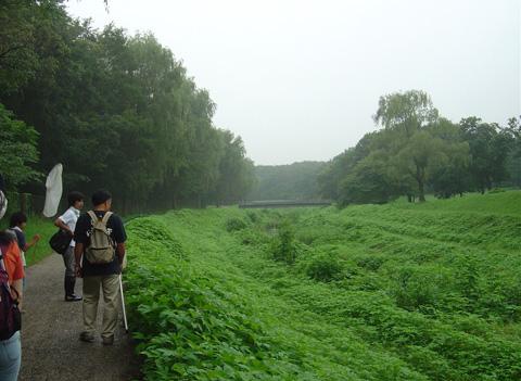 野川風景出発.jpg