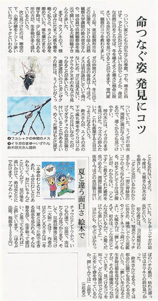 冬の昆虫観察1200s.jpg