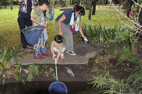 池に網s.jpg