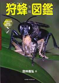 狩蜂生態図鑑表紙.jpg