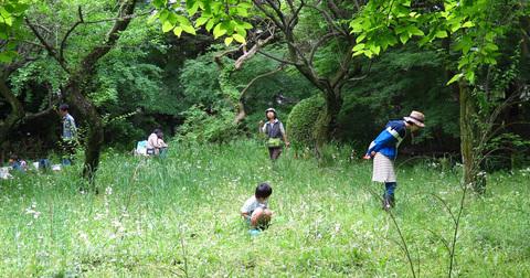 緑地遠景0014.jpg