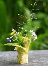 花かご5536.jpg