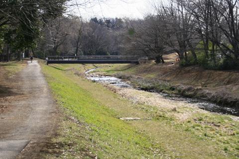 野川公園入り口なら橋からcs3973.jpg
